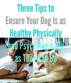 Three Tips to Ensure Your Dog Is as Healthy Physically and Psychologically as They Can Be