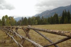 Buck and Rail fence