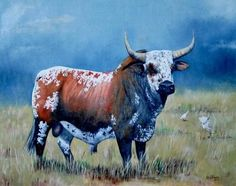 Nguni cattle are stunning, their colours awesome. They are indigenous to South Africa Animal Paintings, Animal Drawings, Gado Leiteiro, Bull Painting, Beef Cattle, Cow Art, Bull Riding, Livestock, African Interior