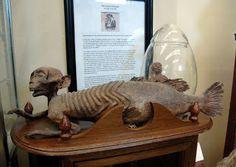 OTIS (Odd Things I've Seen): The New England Grimpendium: International Cryptozoology Museum