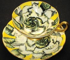Taylor Kent Magnificent-Rose Tea cup and saucer