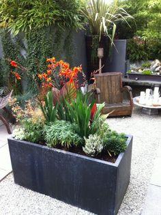 Patio plants in pots ideas patio flower pots outdoor flower planters patio planters and pots ideas . patio plants in pots Cheap Plant Pots, Cheap Plants, Large Outdoor Planters, Patio Planters, Planter Pots, Concrete Planters, Metal Planter Boxes, Trough Planters, Stone Planters