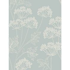 BuyJohn Lewis Cow Parsley Wallpaper, Mineral Online at johnlewis.com