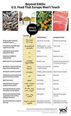 Beyond GMOs Infographic: U.S. Food that Europe Won't Touch
