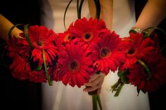 #red bouquet, # red gerbera daisy, # wedding bouquets, copyright In Carnations Design