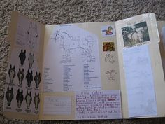 Horses lapbook