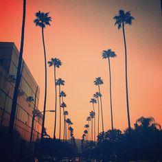 Amazing sunset #LAeveryday