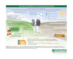 Sustainable Dairy Portrait - Great infograph showing the benefits of dairy and agriculture on the world