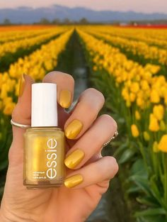 Essie Summer 2021 Collection - Livwithbiv Essie, Nail Polish, Nails, Beauty, Collection, Finger Nails, Ongles, Nail Polishes, Polish
