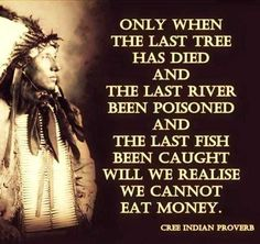 Are you interested in knowing about the red Indians and their way of thinking? Here are the best native American wisdom quotes that beautifully describe their beliefs. Native American Prayers, Native American Spirituality, Native American Wisdom, American Indians, Wisdom Quotes, True Quotes, Funny Quotes, Cree Indians, American Indian Quotes