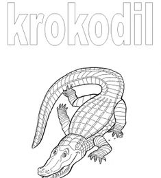 Juf Janneke digbordlinks :: jannekevankammen.yurls.net  Werkboekje krokodil
