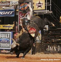 If you have never been to a PBR show...I TOTALLY reccomend it!! Its amazing to see for yourself!!