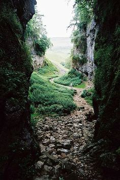Trow Gill, North Yorkshire