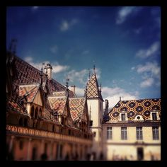 Beaune Bourgogne France . Wine auction