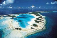 La isla desierta perfecta para pasar un día , solo uno pq no hay mucha comida en ella que digamos