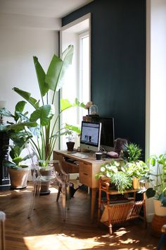 Couleur peinture plants and a work station... http://www.leblogdebigbeauty.com/2016/08/une-jungle-chez-soi/