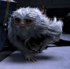 Demiguise | Wiki Harry Potter | Fandom powered by Wikia