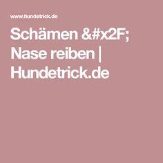 Schämen / Nase reiben | Hundetrick.de