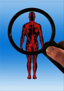 Improve Blood Circulation Naturally     #bloodcirculation #health http://www.genetichealthplan.com/