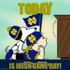 Irish Games, Noter Dame, Notre Dame Irish, Go Irish, Notre Dame Football, Fighting Irish, Soups, Cheer, University