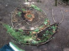 Love this land art snail made from entirely natural materials - so creative!
