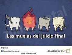 zonadental odontologos odontology memesodontologos humordental zonadentaltv