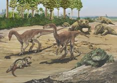 Fauna from the Late Triassic Period of Brazil restored by Jorge Blanco