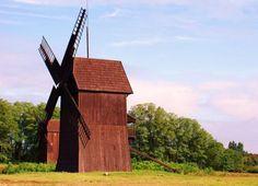 wiatraki w polsce - Osieczna Windmill, Bird, Outdoor Decor, House, Home Decor, Decoration Home, Home, Room Decor, Birds