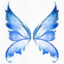 Image result for fairy wings drawing