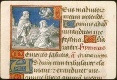 Avignon BM ms 2595