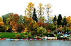 Der Stauseeherbst in Losheim ... ist jedes Jahr ein Ereignis. Bei einer Wanderung um den See kann man die Farben so richtig genießen. Oder bei einem Vesper auf einer Bank am See. :-)