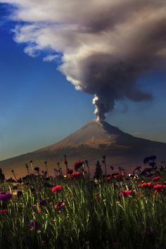Popocatepetl volcano, Mexico, smoking with flowers