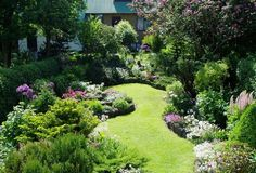 Image result for long thin garden ideas