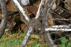 Field Report: Baker Orchard CX