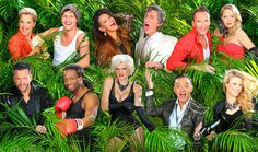 #Dschungelcamp 2014 #Teilnehmer: Das sind die 11 #Kandidaten #IBES #RTL