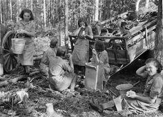 Lotta Svärd -järjestö ehti siirtää suuren omaisuuden turvaan ennen lakkauttamistaan. Pääosa varoista siirtyi lottien hallinnoimalle säätiölle. History Of Finland, Night Shadow, Fight For Us, Wwii, Military, Soldiers, Painting, Freedom, Times