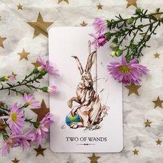 linestrider tarot Divination Cards, Tarot Cards, Linestrider Tarot, Magick, Witchcraft, Cartomancy, Tarot Card Decks, Oracle Cards, Deck Of Cards