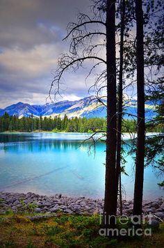Edith Lake Jasper National Park Canada Wallpapers HD Wallpapers