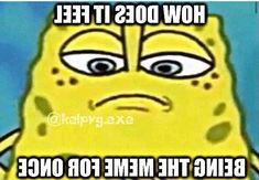 Stupid Funny Memes, Funny Relatable Memes, Haha Funny, Funny Texts, Funny Stuff, Funny Laugh, Lol, Spongebob Memes, My Guy