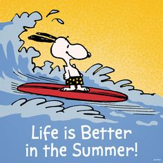 Snoopy surfer