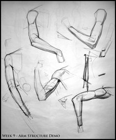 Analytical Figure Drawing SP08: Week 9 - Arm Structure Demo