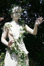 belgisch kampioenschap levende standbeelden : Hedera
