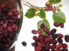 Morušovo-citrónový džem (fotorecept) - Recept Kimchi, Blackberry, Ale, Fruit, Food, Ale Beer, Essen, Blackberries, Meals