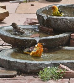 granite basins were stacked to make this bird that was shared on the