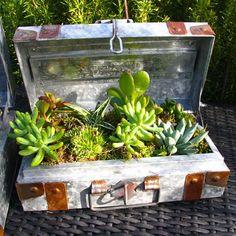 10 Creative and Trendy Container Garden Ideas You'll Love To Follow | Balcony Garden Web