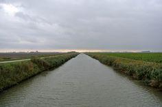 Rechte lijnen in de polder