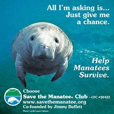 "Save the Manatees...been ""in-love"" with these creatures and have been a part of their cause for about 20 years now. They don't live near me but I have much #WestCoast love for them."
