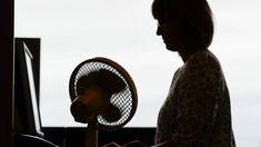 Ökade försäljningen av AC ett problem för klimatet | SVT Nyheter Stockholm, Fossil, Home Appliances, Fan, House Appliances, Appliances, Hand Fan, Fossils, Fans