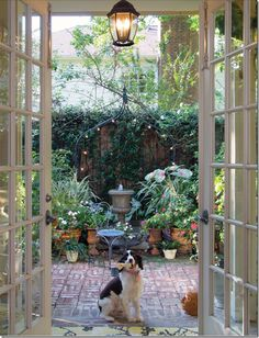 back porch area. I love these french doors and their hardware as well as the foliage on the fence.