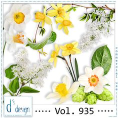 Vol. 935 - Spring Mix by Doudou's Design This set contents 12 elements created and/or photographed and/or extracted by myself  for commercial use. Hight quality. Created at 300dpi. These products can be used for Commercial Use , Personal Use and Scrap for Hire. Freebies allowed
